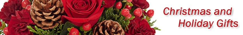 Christmas flowers and Gifts for the holidays delivered in St. Augustine