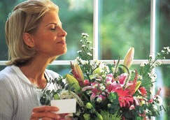 St. Augustine Florist and Flowers by Shirley - For flower plant and gift basket delivery in St. Augustine, Florida FL - Your Saint Augustine Florist